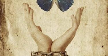 Libertà in prigione