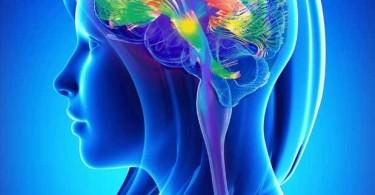 psicosintesi PNEI psiconeuroendocrinoimmunologia