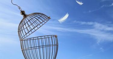 gabbia aperta, Dipendenza e autonomia psicologica