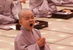 meditazione pigrizia psicosintesi