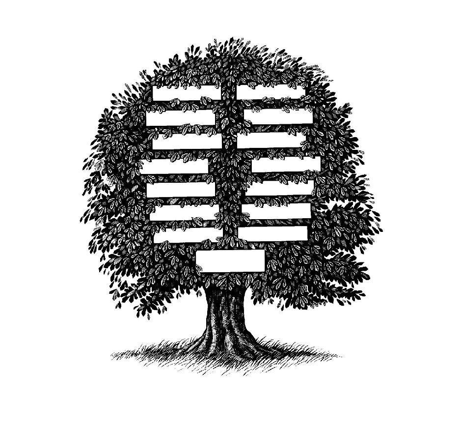 Albero genealogico come struttura psichica, psicologia