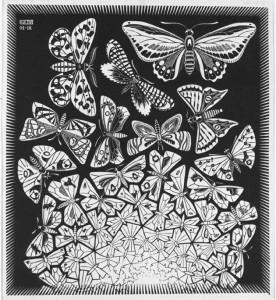 Farfalle, simbolo della trasformazione della sofferenza, consapevolezza