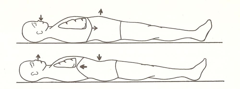 Pratiche per regolare il respiro e sciogliere le tensioni