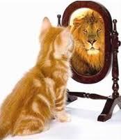 leone allo specchio, esercizio per evocare coraggio