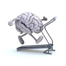 Cervello in esercizio, ginnastica mentale ed educativa