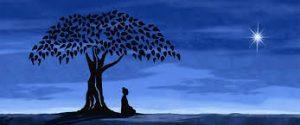 Meditazione di notte, stella, albero