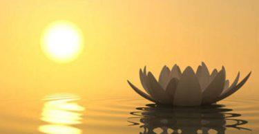 loto, voglia di spiritualità, transpersonale